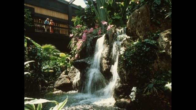 Waterfall-Lobby-jpg.jpg_25309632