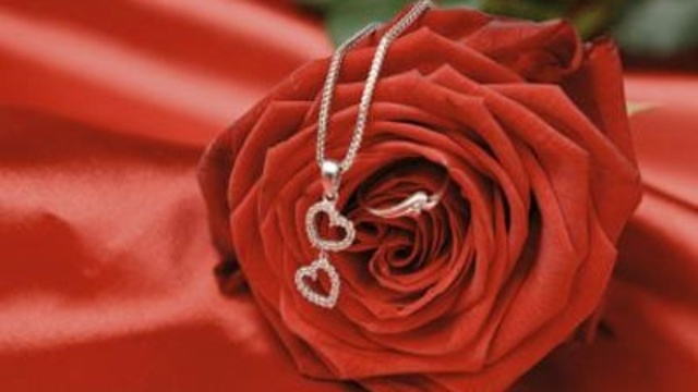 heart-shaped necklace jewelry on red rose