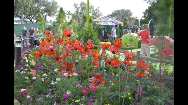 oz poppies