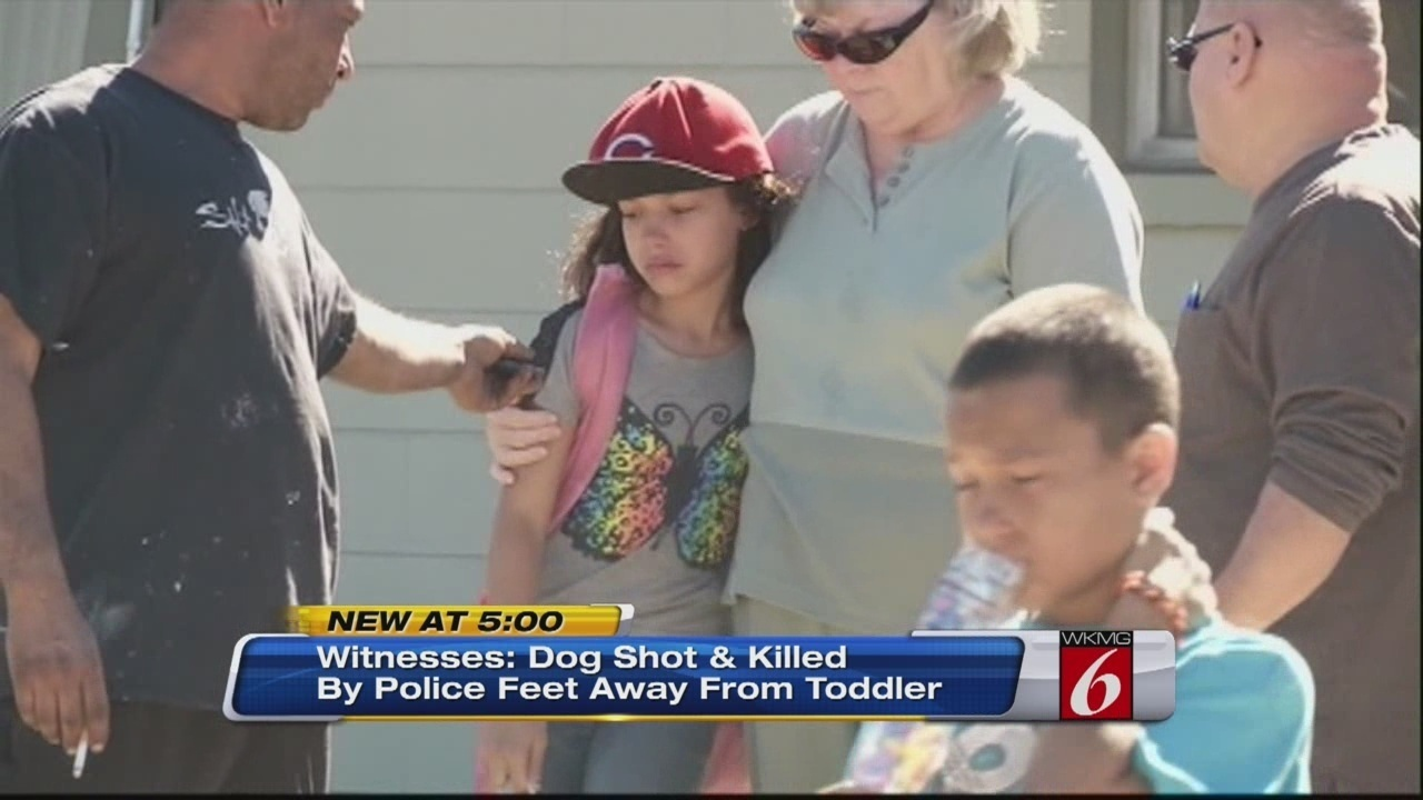 Brevard county deputy shoots kills dog in front of toddler for Wawa winter garden fl