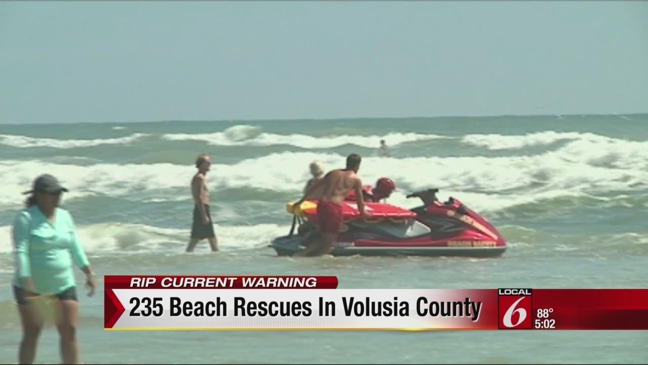 Volusia County Dog Rescue