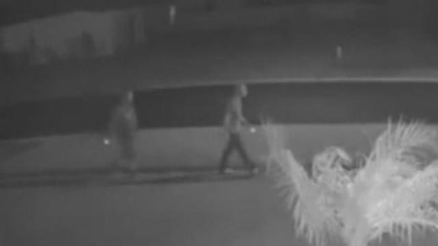 Car burglars caught