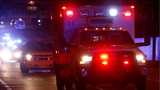 Pedestrian killed walking along highway
