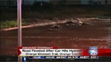 Car hits fire hydrant, flooding Orlando road