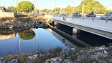 1 dead after car overturns into Orlando canal