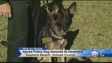 Police dog awared Purple Heart after taking bullet