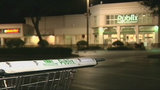 Thief swaps carts with Publix customer to steal money, Oviedo police say