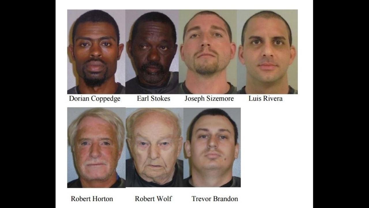Flagler County makes 7 arrests in Operation Predator