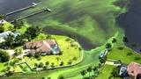 Algae blooming in waterways across country