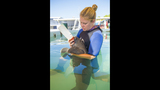SeaWorld Orlando cares for 2-week-old orphaned manatee