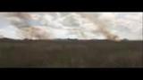 Raw video shows scope of Brevard brush fire