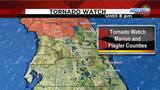 News 6 Meteorologist Danny Treanor pinpoints severe weather in central Florida