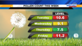 Unseasonably warm weather boosts pollen in Central Florida