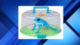 Little Live Pets Lil Frog recalled due to chemical, injury hazard