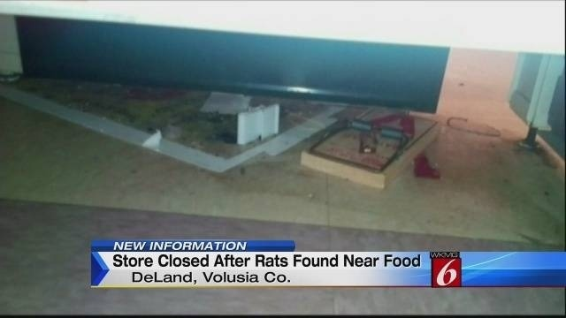 11pm Rats Found in Store