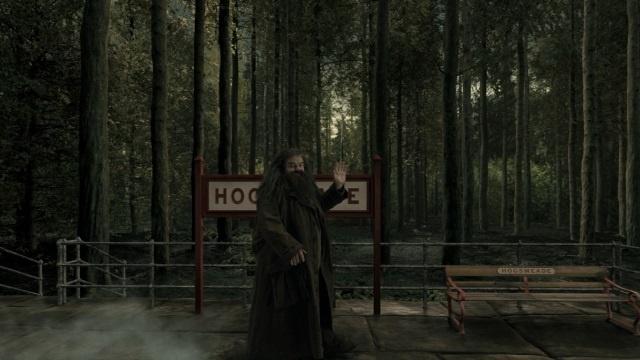 Hagrid_24979638