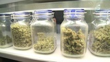 Brevard supports moratorium on medical marijuana dispensaries