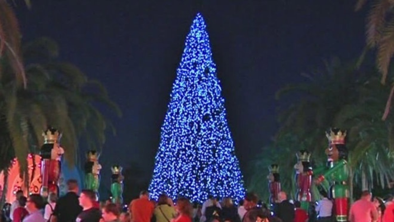 orlando lights up official christmas tree