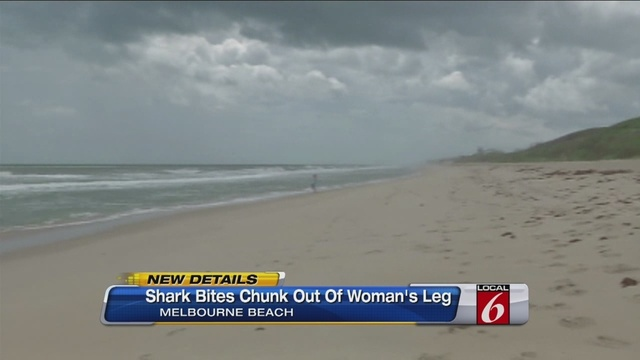 Shark Attacks Woman Off Brevard Coast