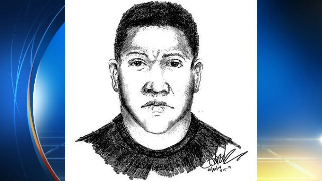 Armed burglar sketch