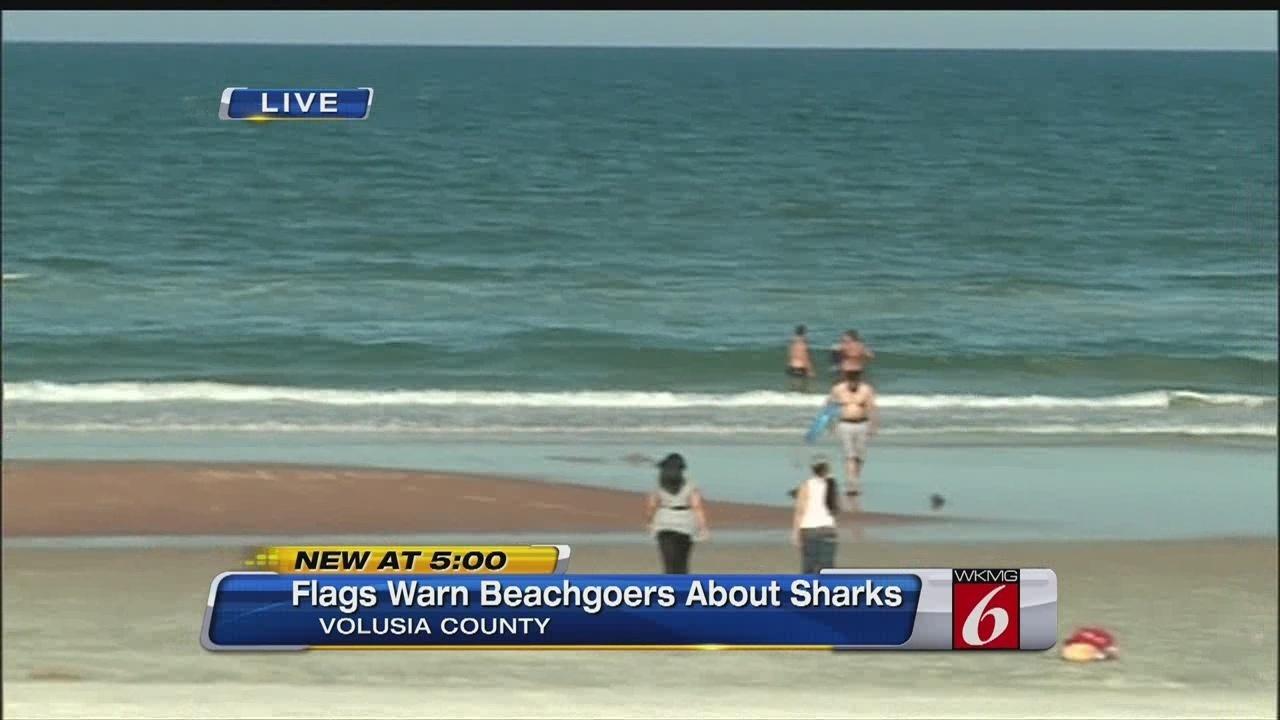 Shark Warning On Daytona Beach