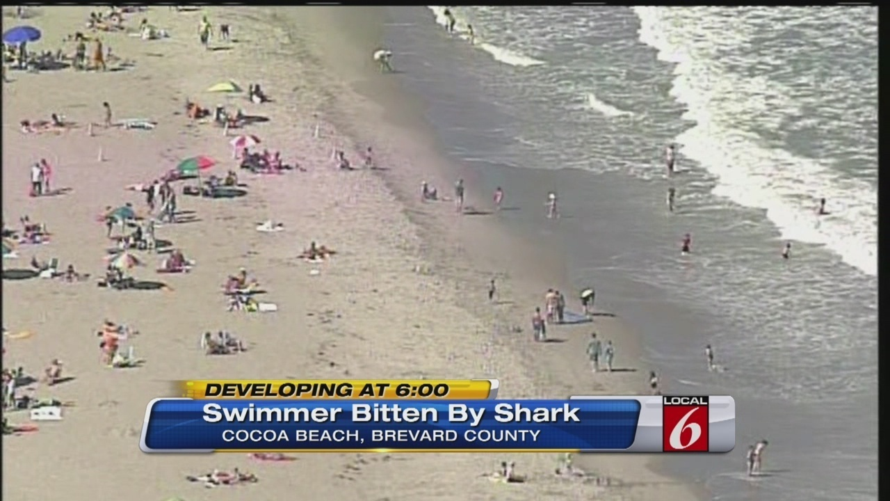 Shark Attack Cocoa Beach Fl