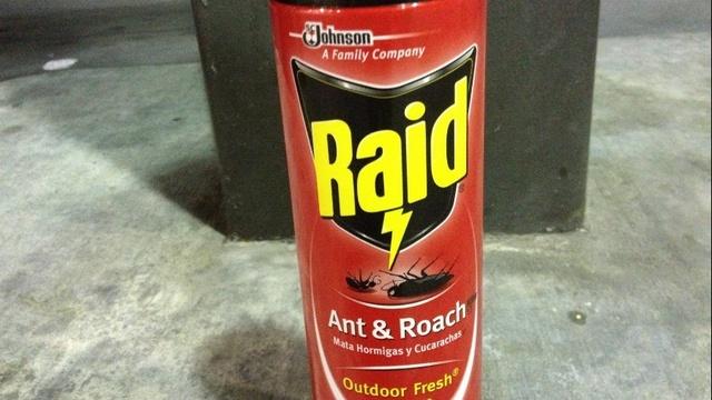 Raid cans_19736346