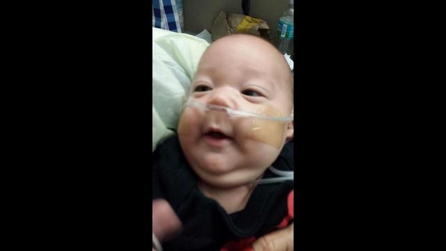 BABY SEBASTIAN_24605718