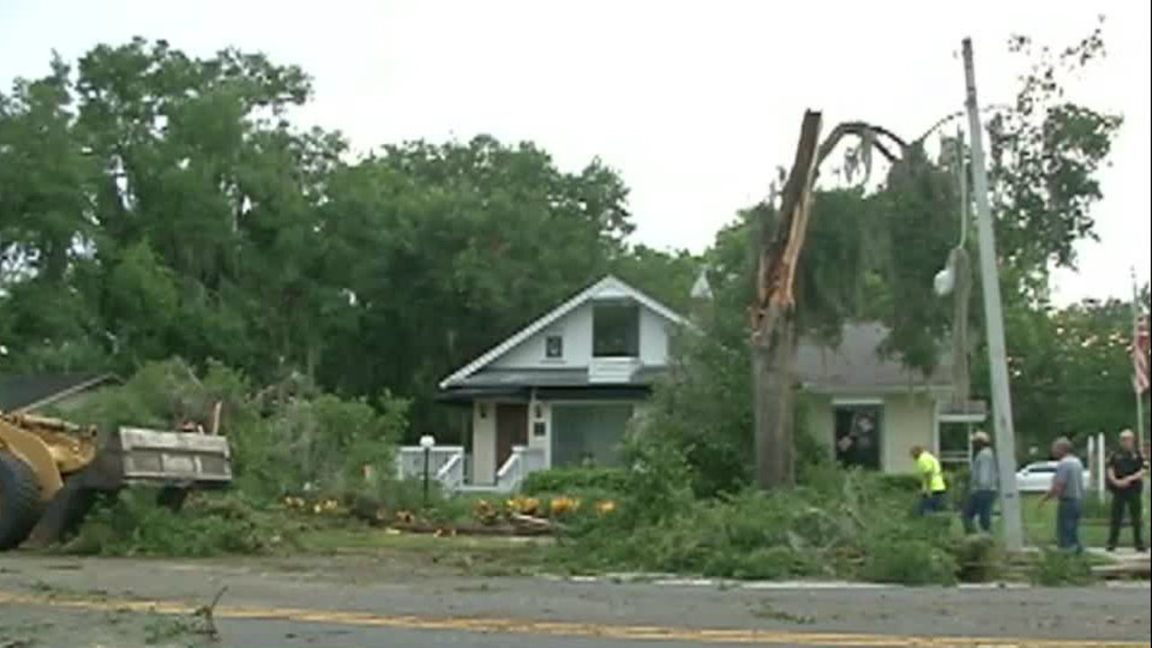 O Meara Ford >> Storms topple trees across Mt. Dora
