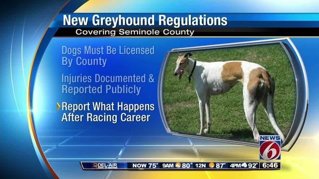 Seminole enacts new greyhound racing regulations20160810111153.jpg