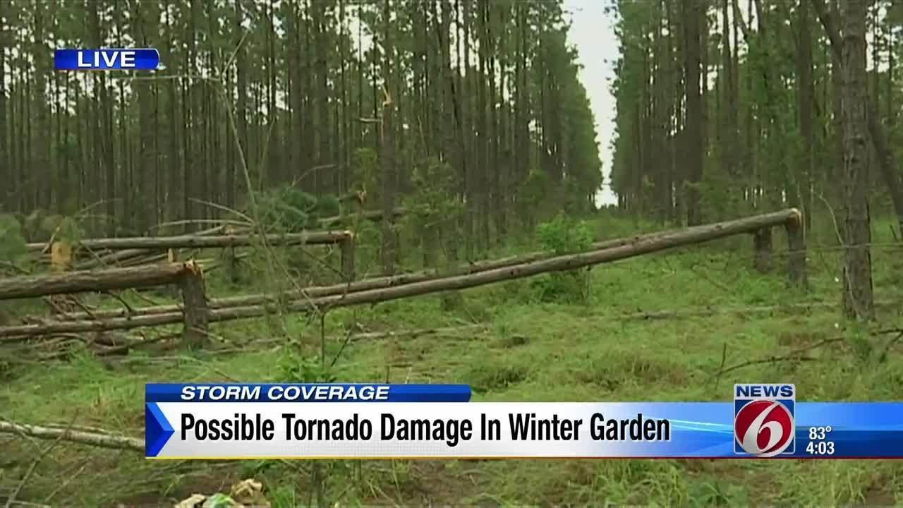 possible tornado damage in winter garden