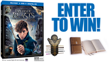 Fantastic Beasts Contest