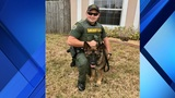 Brevard Co. Sheriff's Office announces name of newest K-9 unit puppy