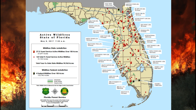 Arsonists Blamed for 320 Florida Wildfires in 2017