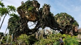 A look at Disney World's new Pandora-World of Avatar land