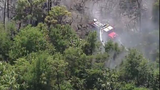 Police: Child who set books on fire for YouTube video caused Brevard brush fire