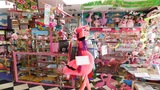 Florida woman earns world record for flamingo collection