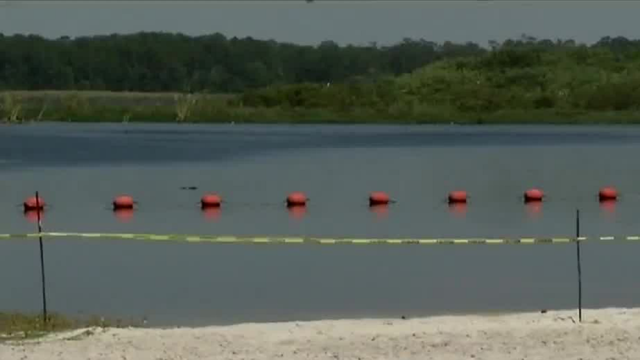 Moss Park Swimming Area Could Close Permanently After Gator