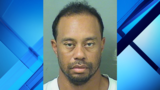 Tiger Woods charged with DUI in South Florida