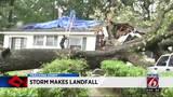 Tropical depression Cindy makes landfall