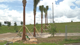 City of Orlando offering citizens free trees