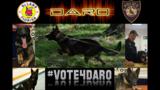 DeLand police seek canine bullet-resistant vest