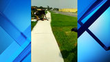 Video: Group attacks, robs 19-year-old bicyclist in Orlando