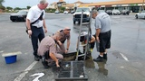 13 ducklings rescued from storm drain