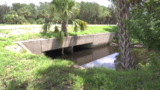 Teen saves man who fell in canal
