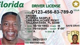 New Florida IDs to hit test markets next month