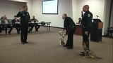 Seminole County Schools comfort dogs swearing-in ceremony