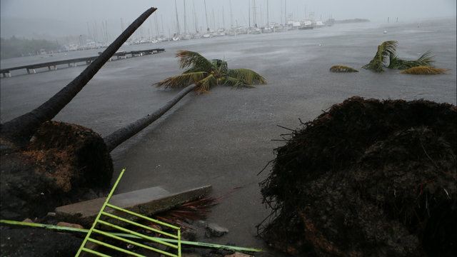 Minnesota Power Company to Help Hurricane Irma Victims
