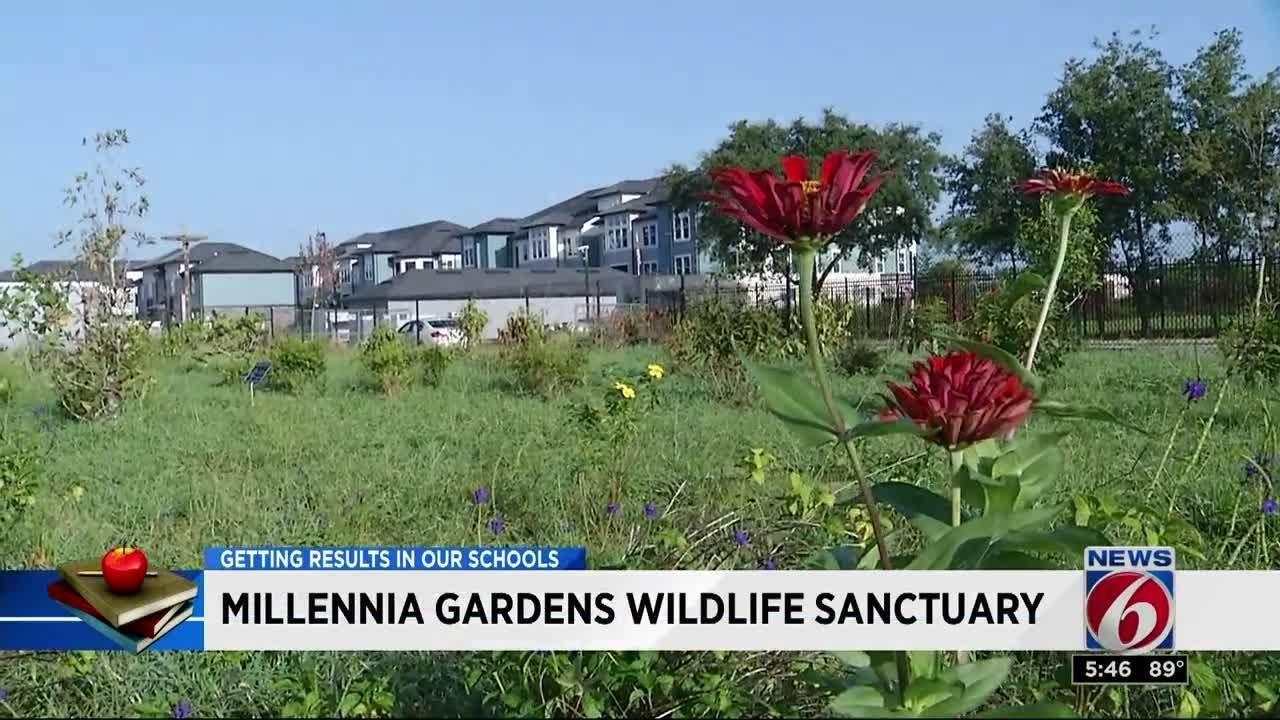Orange County elementary school gets new wildlife sanctuary
