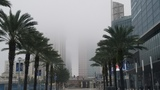 Drivers deal with fog in Central Florida on busy travel day